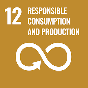 Sustainable Development Goal