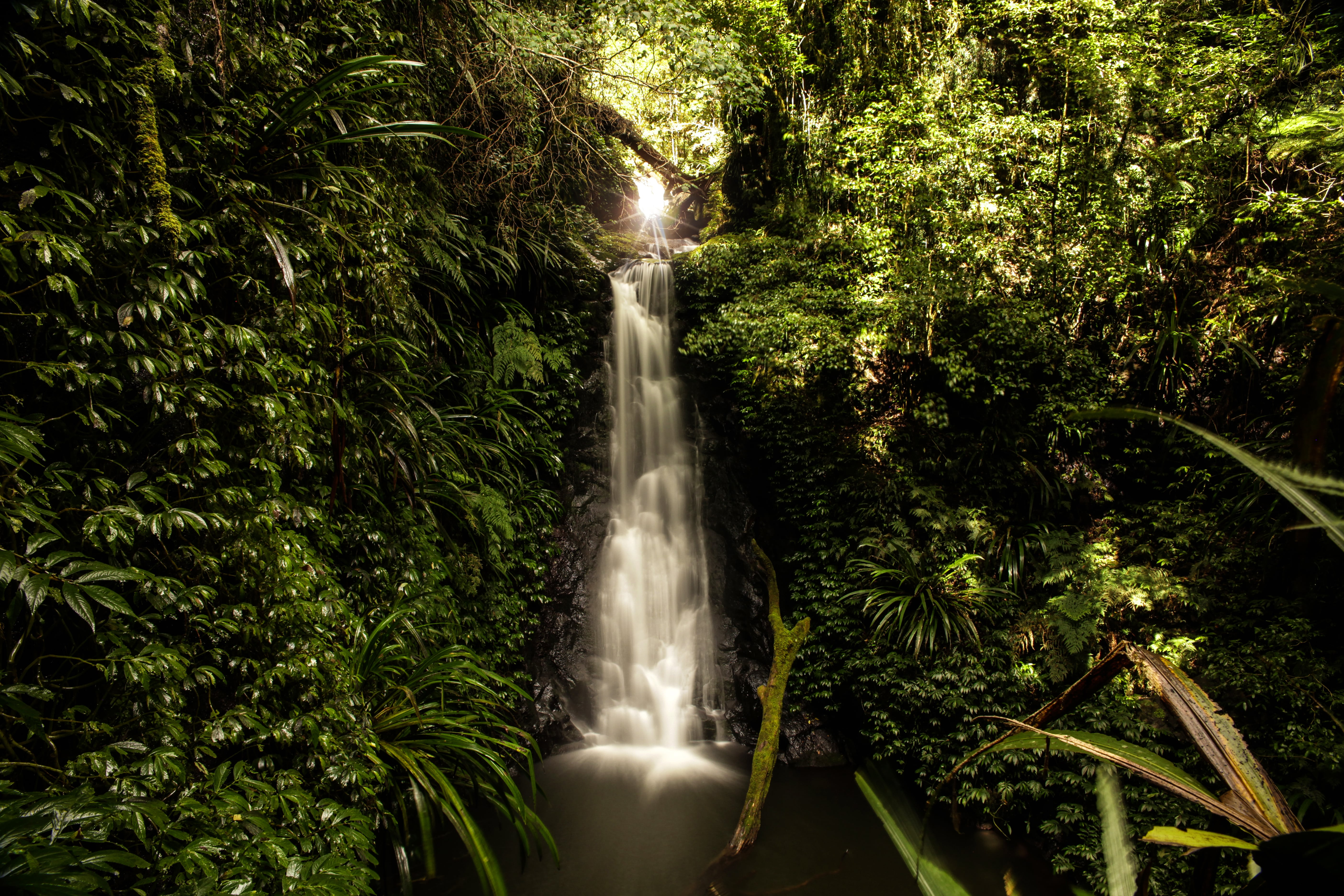 Gwongurai Falls Tooloona Circuit Hiking Nowhere & Everywhere Gold Coast Hinterland Brisbane Lis Dingjan Photography Queensland #thisisqueensland Springbrook O'Reilly's Lamington National Parks