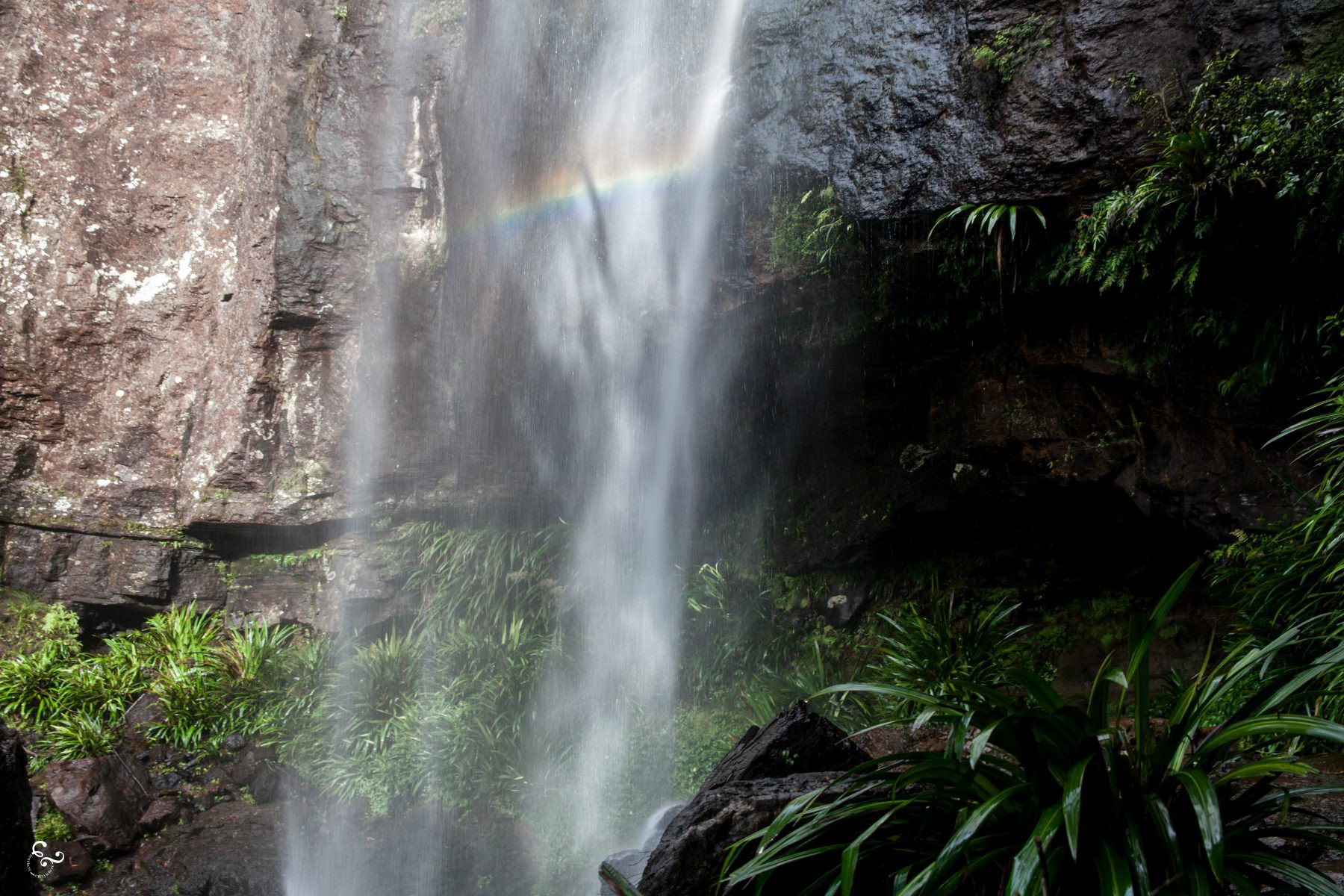 Rainbow Falls Waterfalls Nowhere & Everywhere Gold Coast Hinterland Brisbane Lis Dingjan Photography Queensland #thisisqueensland Springbrook O'Reilly's Lamington National Parks