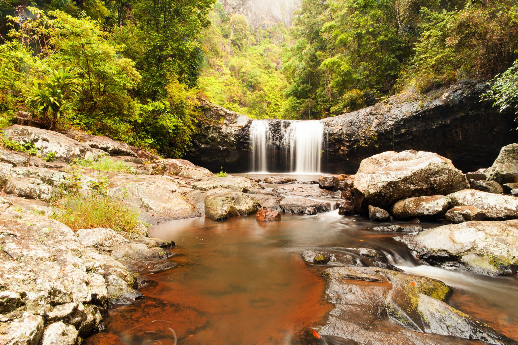 Lipp Falls Back Creek Beechmont Nowhere & Everywhere Gold Coast Hinterland Brisbane Lis Dingjan Photography Queensland #thisisqueensland Springbrook O'Reilly's Lamington National Parks