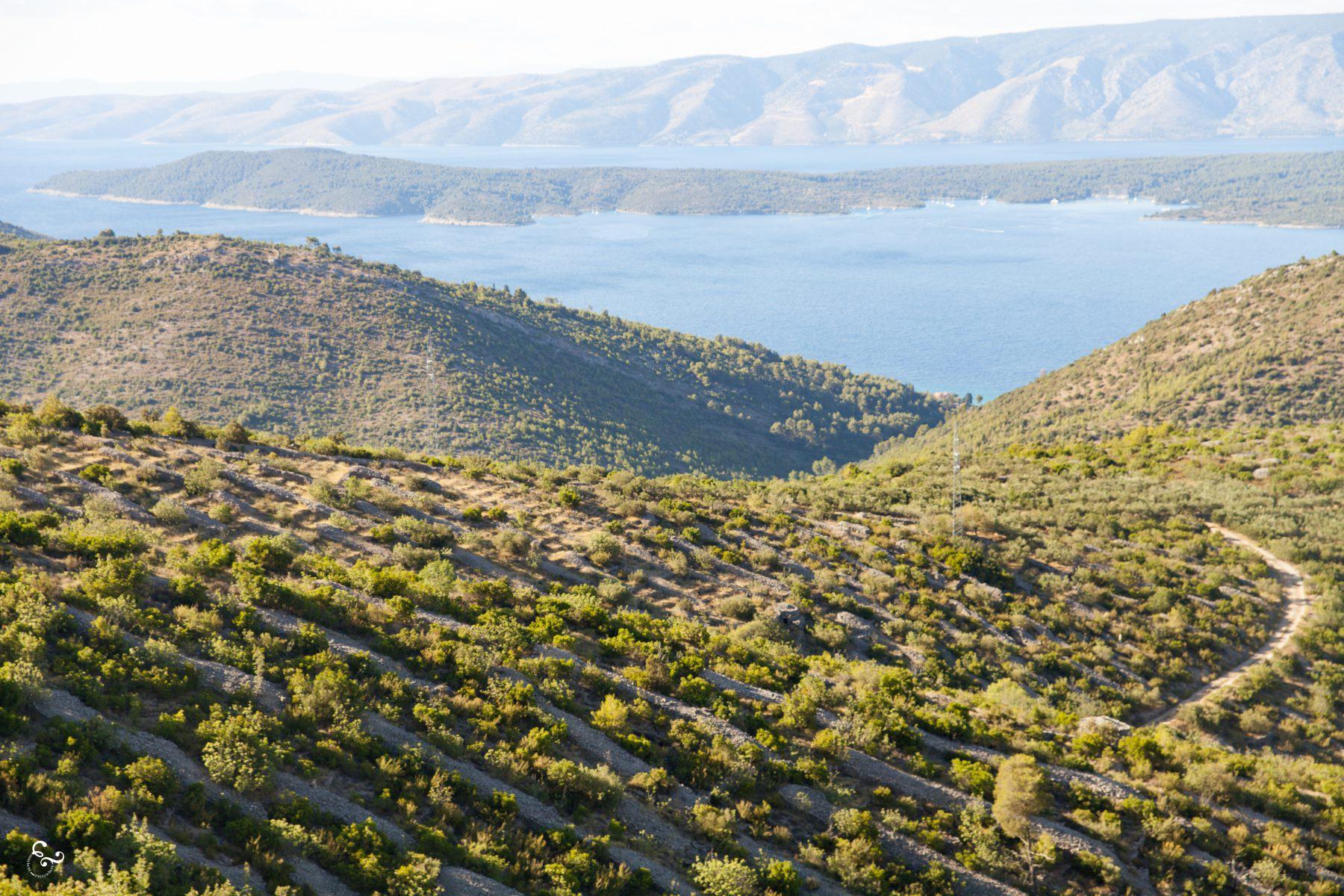 Hvar Island Croatia Photography Lis Dingjan Nowhere & Everywhere Travel Sustainability Free Range Pixels Blog