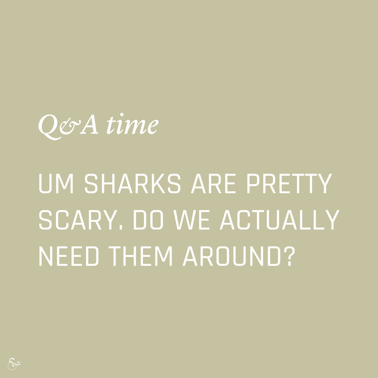 Do we really need sharks? Environment Environmental Questions FAQs Frequently Asked Questions Climate Change Plastics Oceans Animals Nowhere & Everywhere