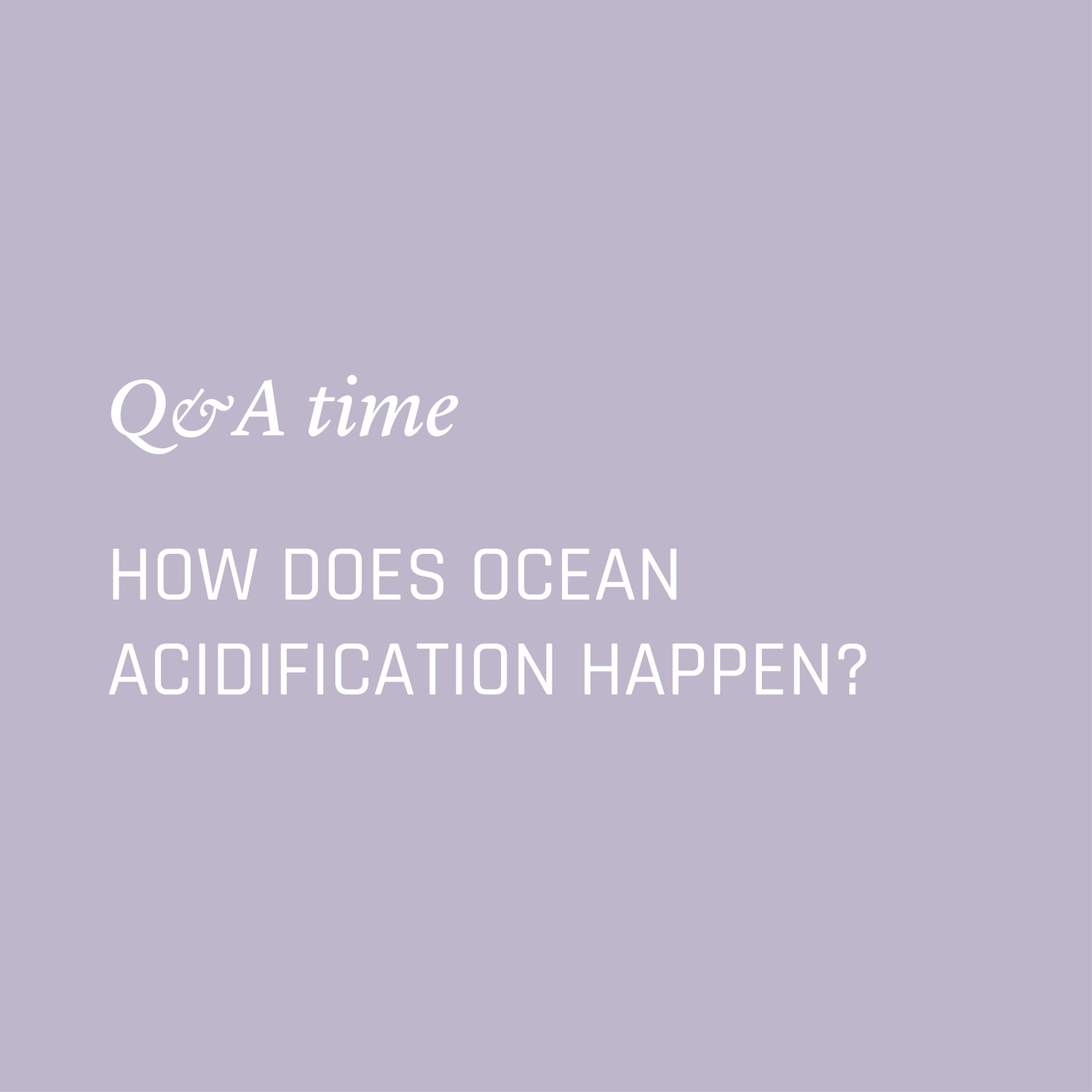 How does ocean acidification happen? Environment Environmental Questions FAQs Frequently Asked Questions Climate Change Plastics Oceans Animals Nowhere & Everywhere
