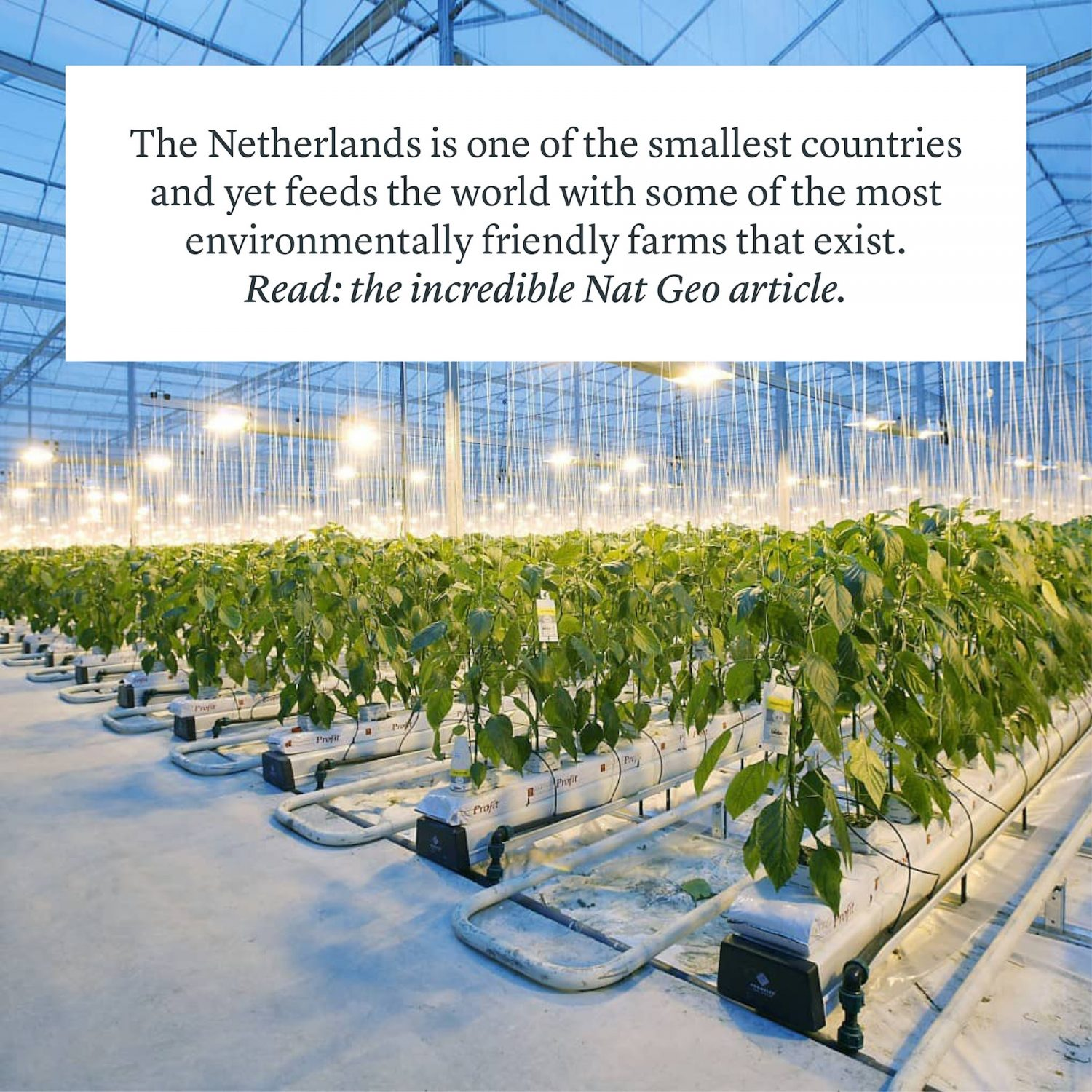 The Netherlands Environment Environmental Innovations Technology Climate Change Zero Waste Renewables