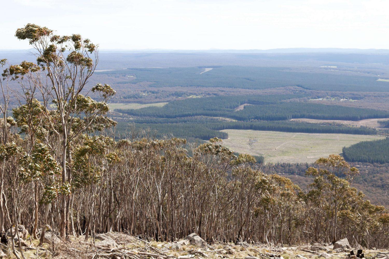 Daylesford Victoria Australia Cute Towns Travel Blog Environmentalism Sustainability Photography Nowhere & Everywhere Lis Dingjan