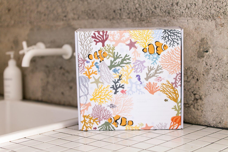 Zero Waste Plastic Free Bathroom Kit Unstuff Your Bathroom Hairbrush Coconut Toothbrush Gift Toilet Paper Shampoo Conditioner Soap Razor Nowhere & Everywhere