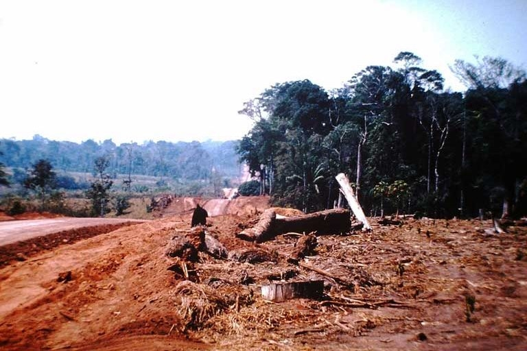 The Surui Forest Carbon Project Carbon Schemes Selling Nowhere & Everywhere Deforestation Mining Gold Diamonds