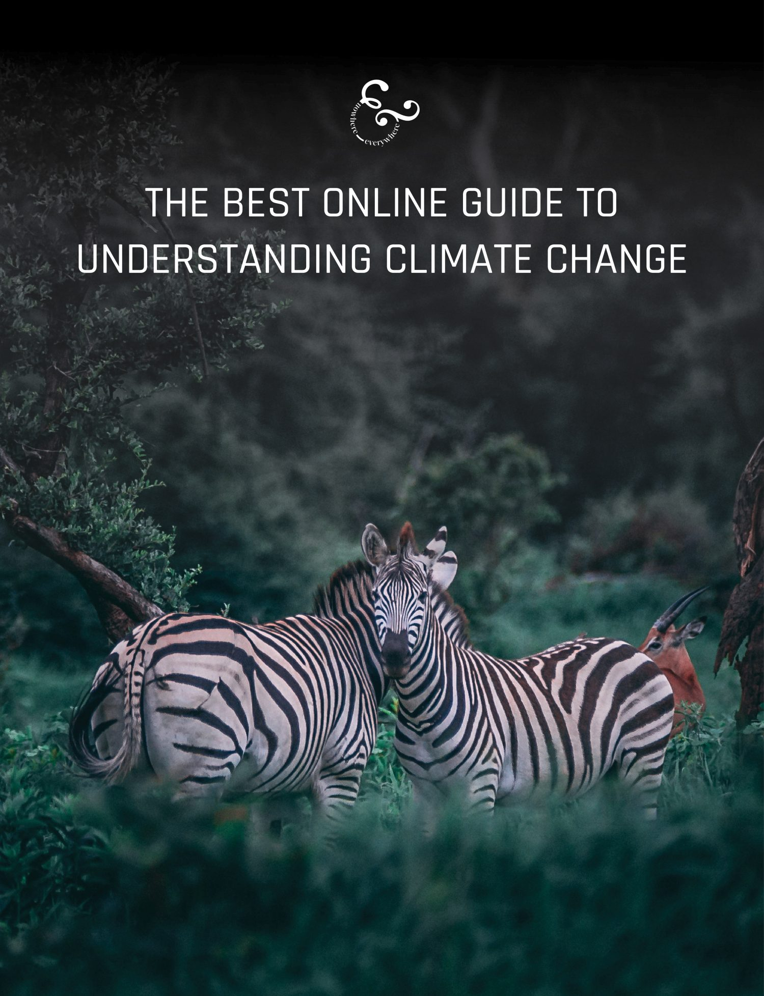 A comprehensive online guide to climate change climate crisis carbon emissions global warming - Nowhere & Everywhere - What is climate change and what can I do about it? Pandemics