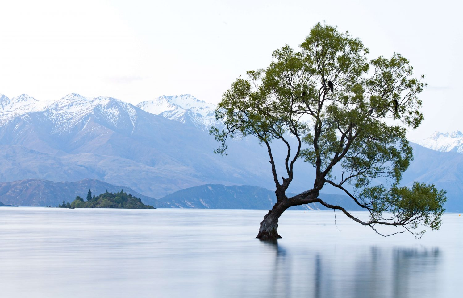 New Zealand Wanaka Region Glendhu Bay - Eco Green Slow Sustainable Travel - Nowhere & Everywhere