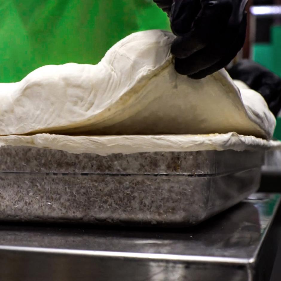 Circular Economy Sustainable Vegan Plant Based Faux Leathers - Nowhere & Everywhere - Alternative Leather Guide - Mushroom Leather