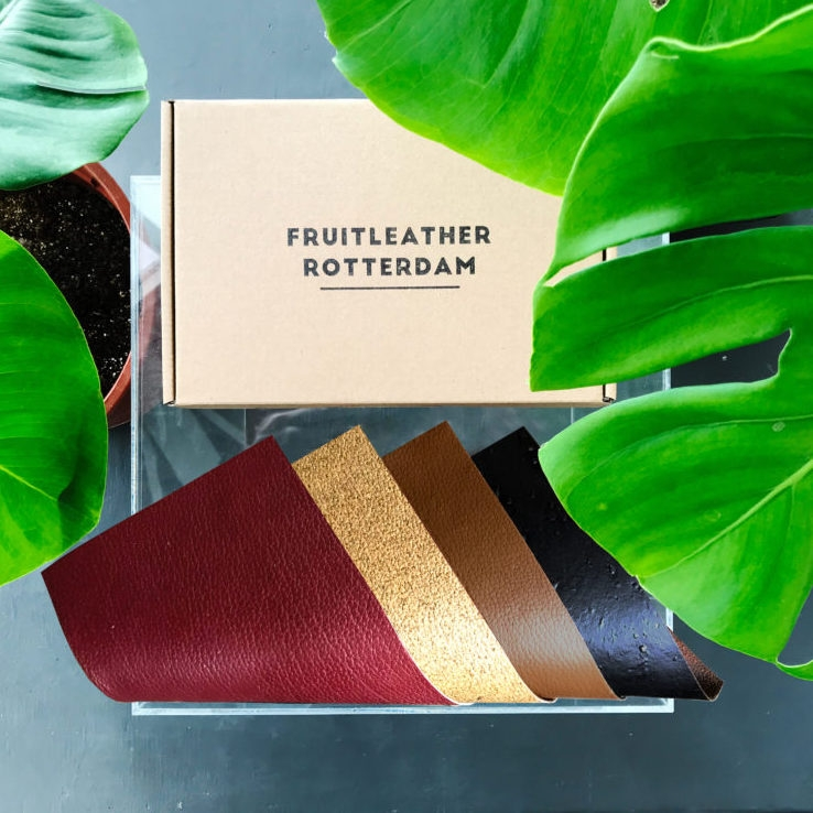 Sustainable Vegan Plant Based Faux Leathers - Nowhere & Everywhere - Alternative Leather Guide - Apple Cider Fruit Leather