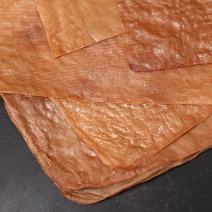 Tea Leather - Sustainable Vegan Plant Based Faux Leathers - Nowhere & Everywhere - Alternative Leather Guide