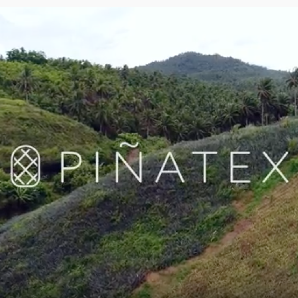 Sustainable Vegan Plant Based Faux Leathers - Nowhere & Everywhere - Alternative Leather Guide - Pinatex Pineapple Leather