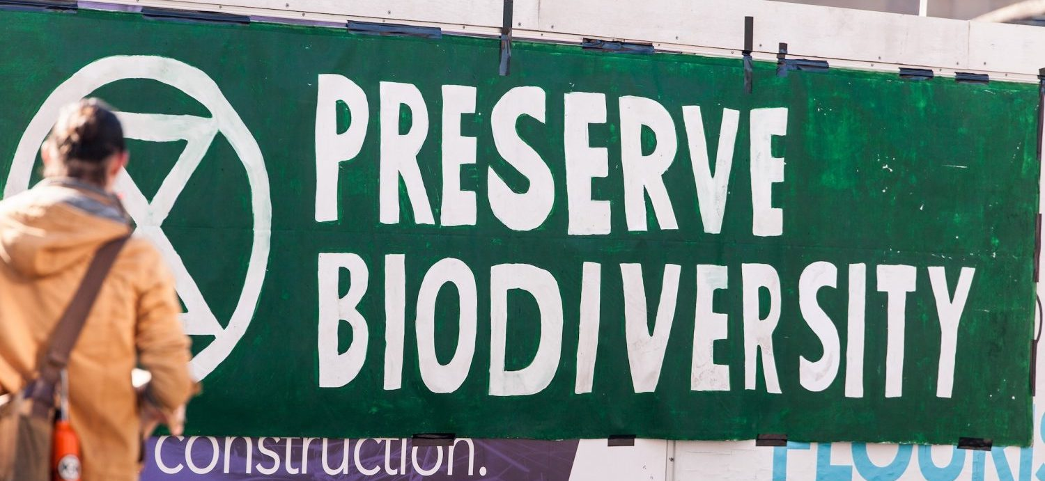 Nowhere & Everywhere - Learn about climate change, climate justice and biodiversity