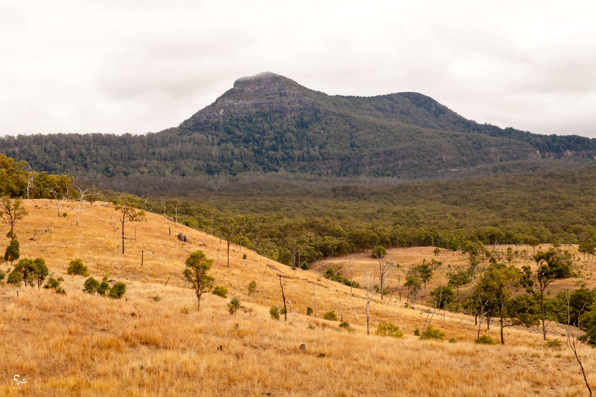 Stanthorpe Queensland road trip travel photography wineries mountains scenic rim - Nowhere & Everywhere - Lis Dingjan