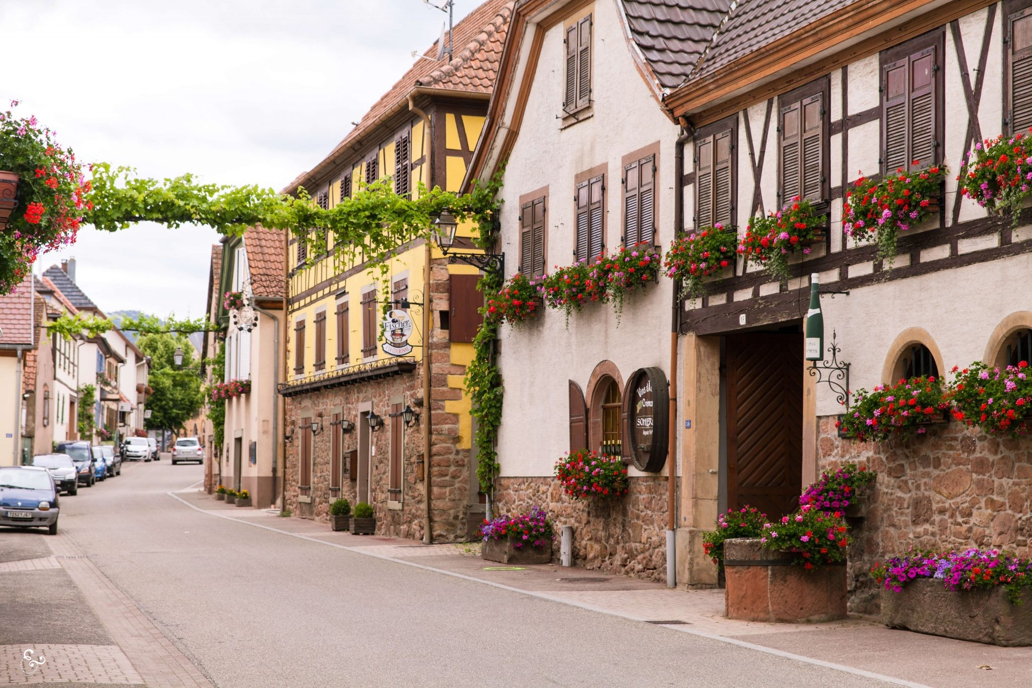 Alsace France Wine Route - Nowhere & Everywhere - Sustainable travel Europe road trip